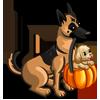 Treat Us Dog-icon