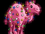 Circus Cookie Camel