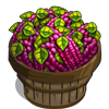 Love Lies Bleeding Bushel-icon