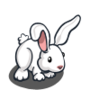 Long Eared Rabbit-icon
