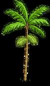 Acai Tree1-icon