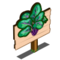 Violet Vein Spinach Mastery Sign-icon