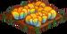 Autumn Cabbage 66