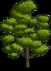 Durian Tree1-icon