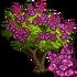 Giant Queen's Crape Tree-icon