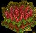 Red Australian Wheat 100