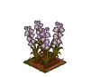 Wither Bunch Gladiolus-icon