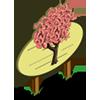 Big Basic Derby Tree Mastery Sign-icon