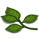 Leaves-icon