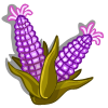 Purple Sweet Corn-icon