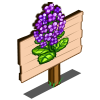 Purple Canola Mastery Sign-icon