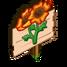 Sun Poppy
