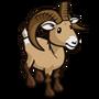 Big Horn Sheep-icon