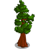 CA Redwood-icon.png
