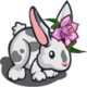 Orchid Bunny-icon