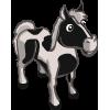 Pinto Horse-icon