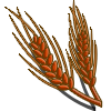 Red Wheat-icon