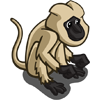 Langur Monkey-icon