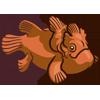 Orange Frogfish-icon