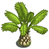 Short Palms-icon