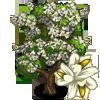 Carolina Silverbell Tree-icon