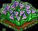 Lavender Lily 100