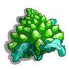 Royal Cauliflower-icon