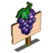 Sangiovese Mastery Sign-icon