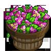 Fuchsia Bougainvillea Bushel-icon