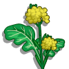 Mustard-icon