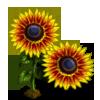 Fire Sunflower-icon