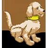 Labradoodle II-icon