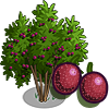 Passion Fruit Tree-icon