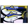 Yellow Fin Tuna-icon