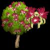 Malabar Chestnut Tree-icon