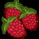 Raspberry-icon