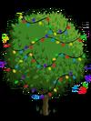Blood Orange Tree5-icon