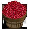 Cranberries Bushel-icon