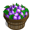 French Petite Plum Bushel-icon