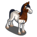 Abaco Barb Horse-icon