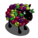 Cabernet Grape Sheep-icon