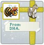 Present DHA