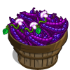Purple Queen Bean Bushel-icon
