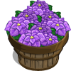 Purple Poinsettia Bushel-icon