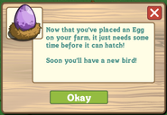 Rare Purple Aviary Egg-FOUND