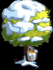 Silver Maple8-icon