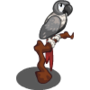 African Gray-icon
