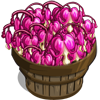 Bleeding Heart Bushel-icon