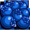 Organic Blueberries-icon