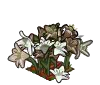 Wither Bunch Lilies-icon